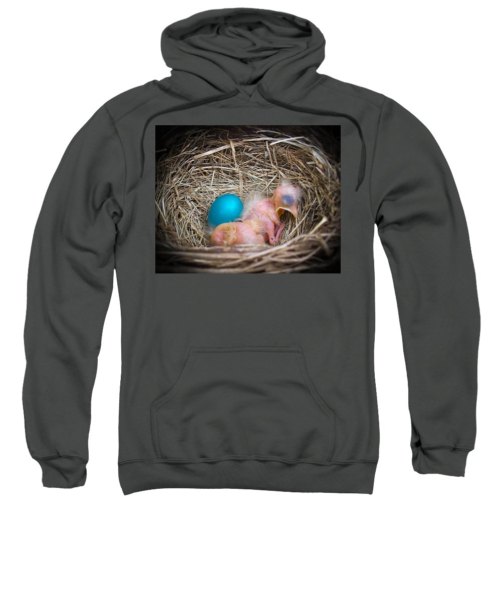 Robin Sweatshirt featuring the photograph The Shimmering Blue Egg by Trish Tritz