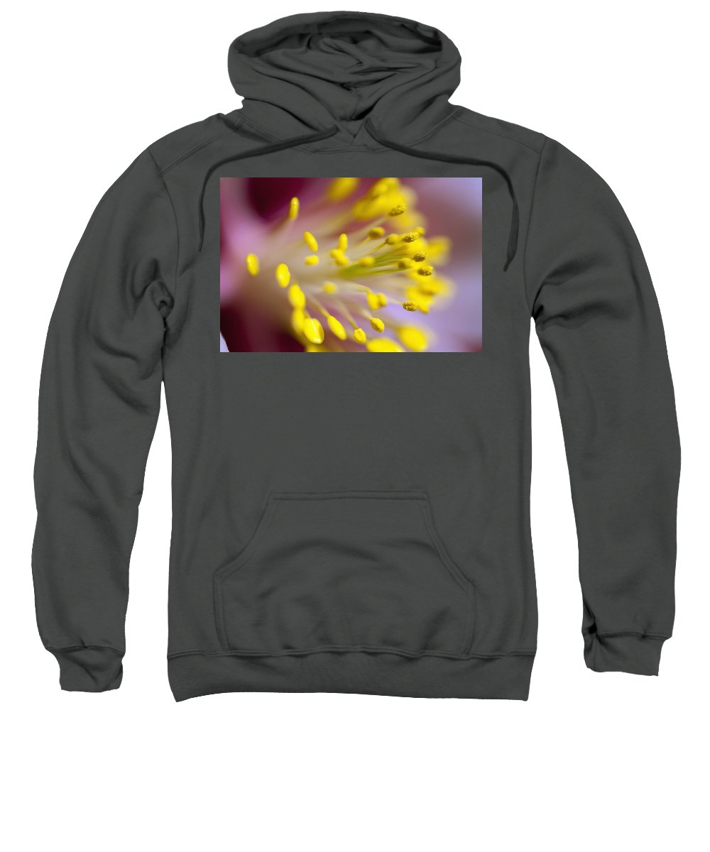 Stamen Sweatshirt featuring the photograph The Stamen Of A Flower by Craig Tuttle