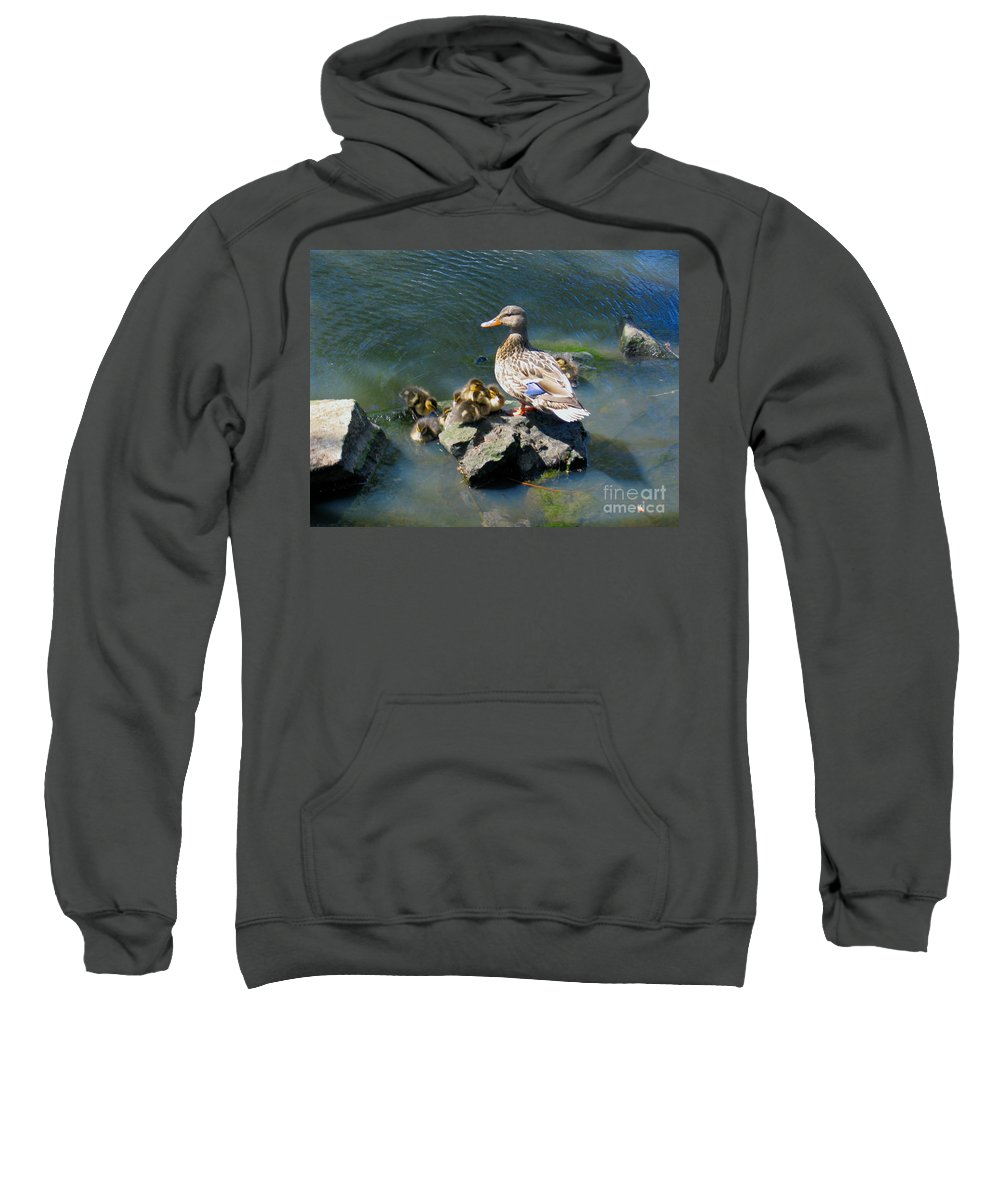 Ducks Sweatshirt featuring the photograph The Swimming Lesson by Rory Sagner