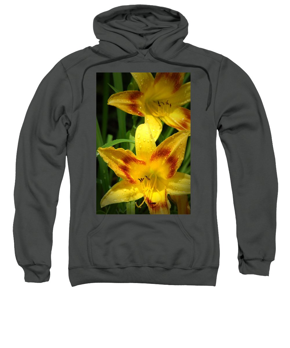 Flower Sweatshirt featuring the photograph Tiger Lilies by David Weeks