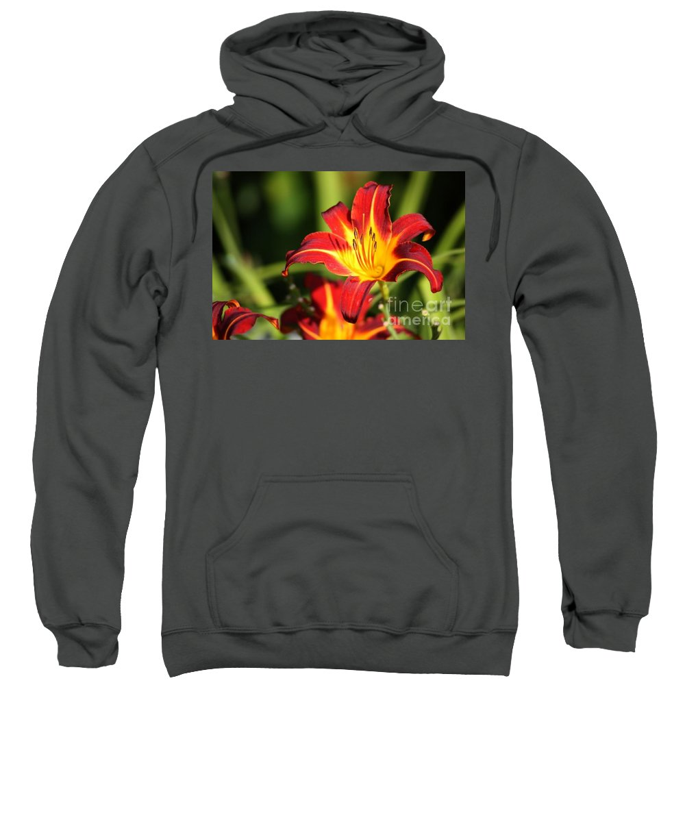 Tiger Lily Sweatshirt featuring the photograph Tiger Lily0239 by Gary Gingrich Galleries
