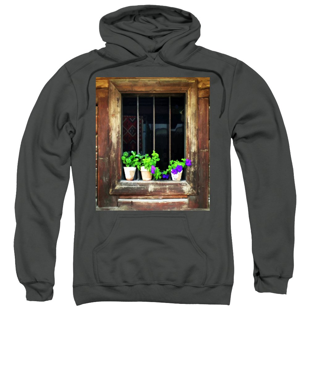 Architecture Sweatshirt featuring the painting Time Worn Window With Bright Flowers by Elaine Plesser