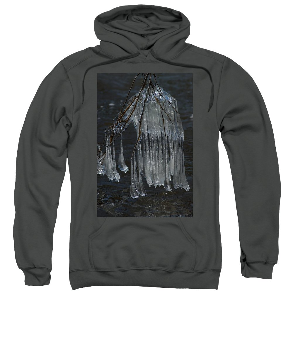 Ice Sweatshirt featuring the photograph Together by Joseph Yarbrough