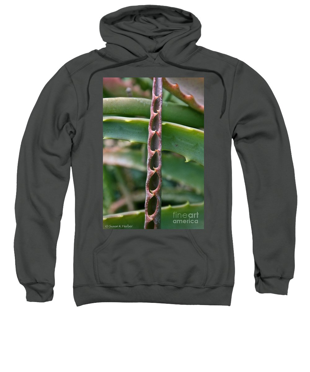 Outdoors Sweatshirt featuring the photograph Torch Aloe Symmetry by Susan Herber