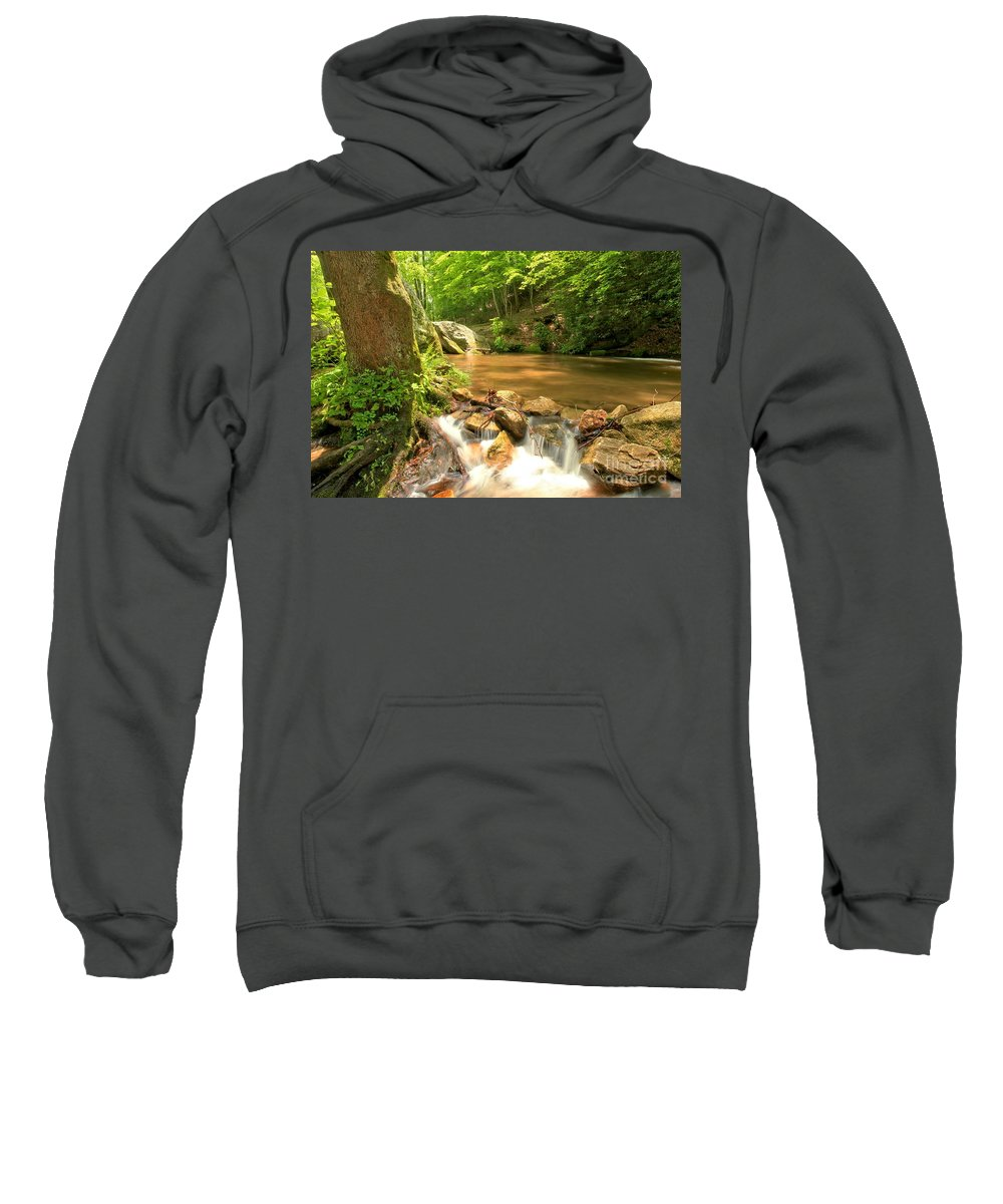 Stone Mountain State Park Sweatshirt featuring the photograph Tree In The Bend by Adam Jewell