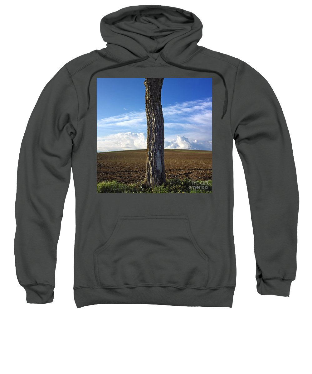 Agricultural Landscape Sweatshirt featuring the photograph Tree Trunk by Bernard Jaubert