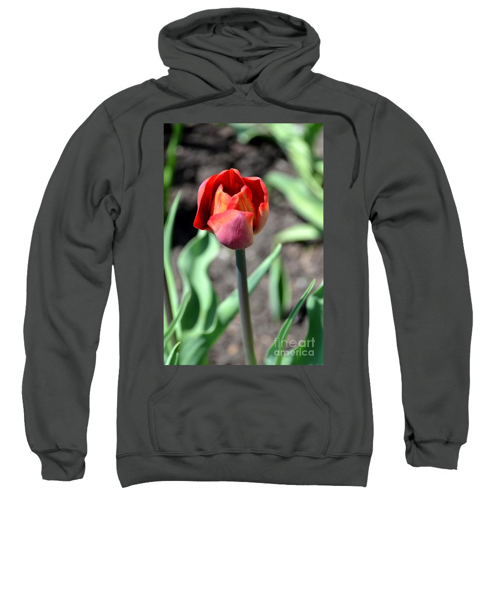 Tulip Sweatshirt featuring the photograph Tulip by Pravine Chester