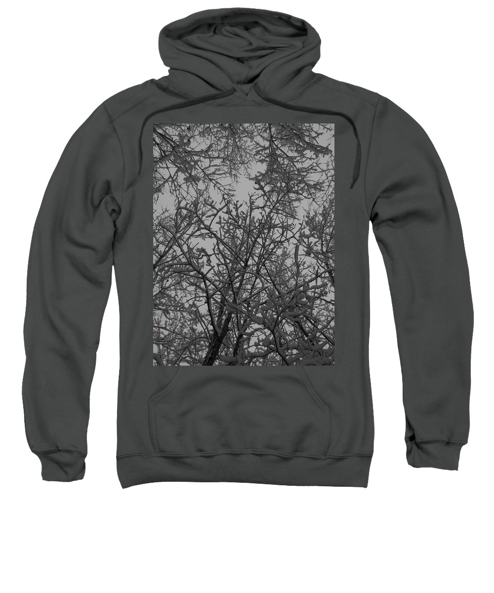 Snow Sweatshirt featuring the photograph Under The Canopy by Stephanie Kripa