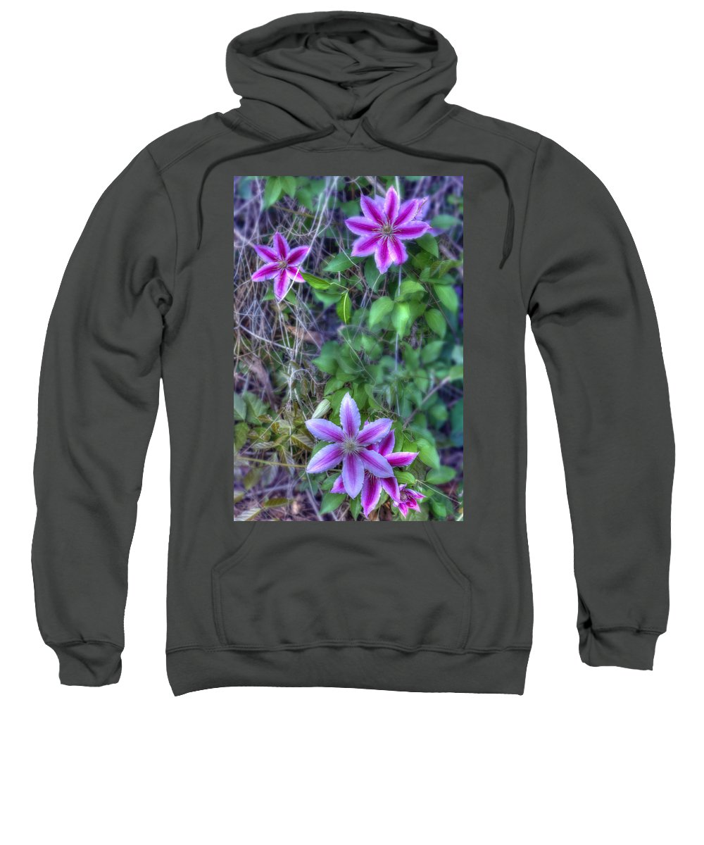 Clematis Sweatshirt featuring the photograph Up The Fence by Barry Jones