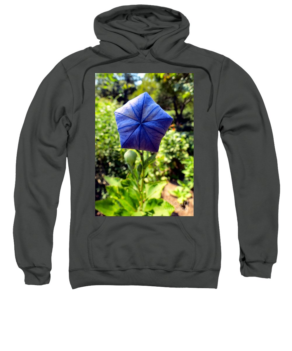 Flower Sweatshirt featuring the photograph Up Up And Away by Art Dingo