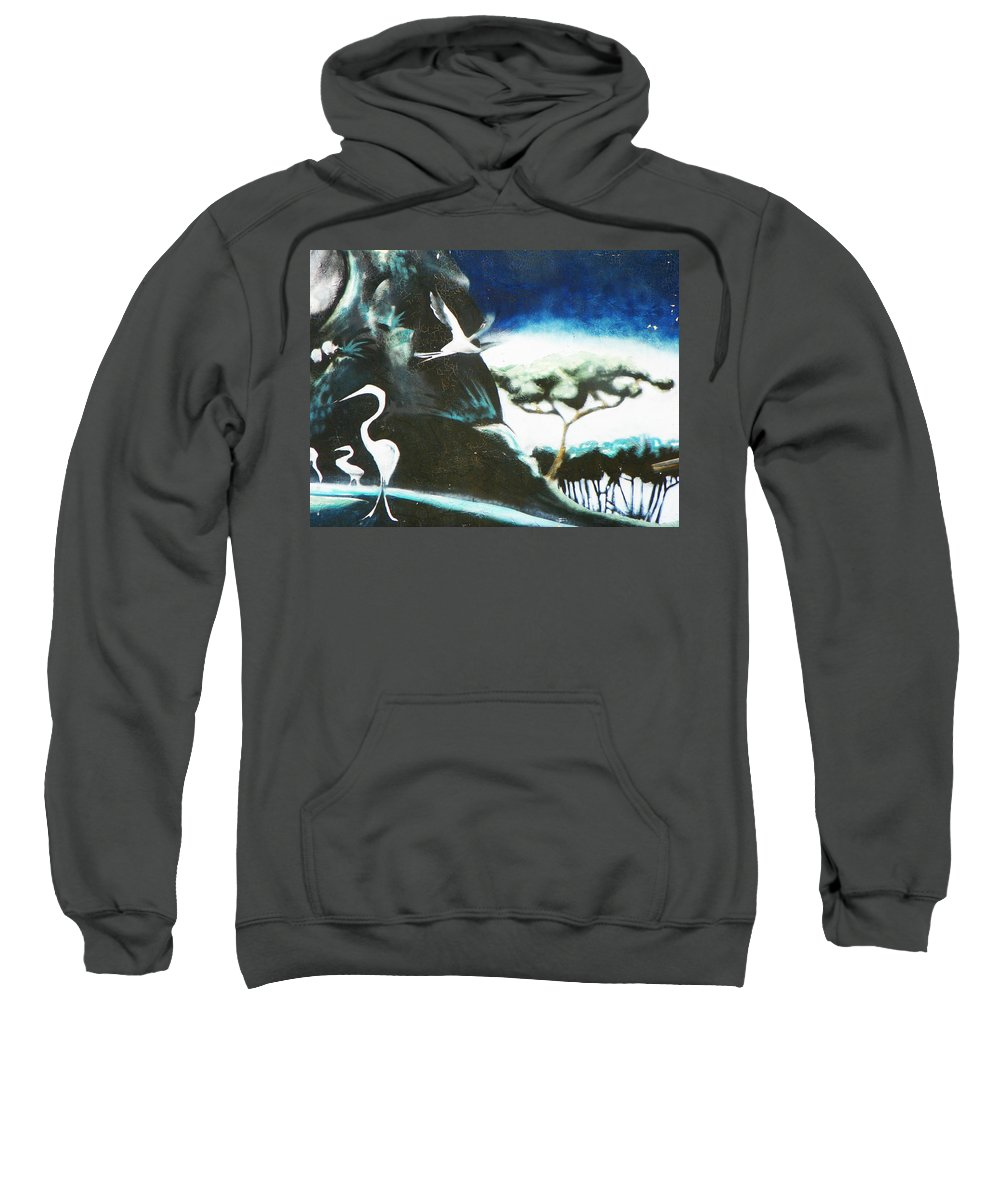 Abstract Sweatshirt featuring the photograph Urban Art - Oriental Detail By Nino by Lenore Senior