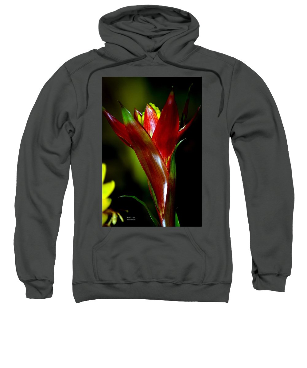 Vibrant Sweatshirt featuring the photograph Vibrantly Rich In Red by Maria Urso