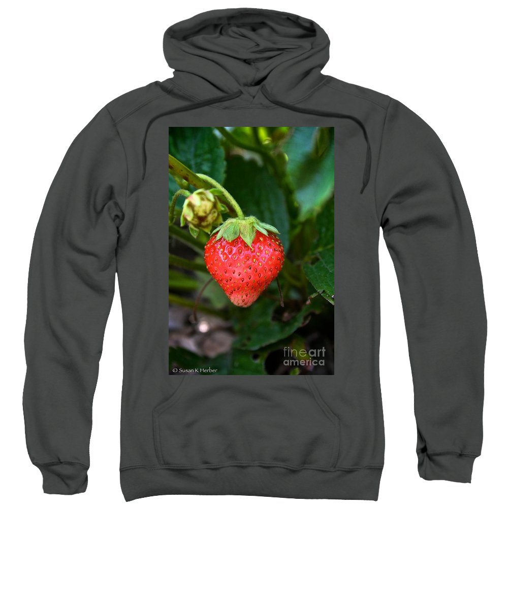 Outdoors Sweatshirt featuring the photograph Vine Ripened Strawberry by Susan Herber
