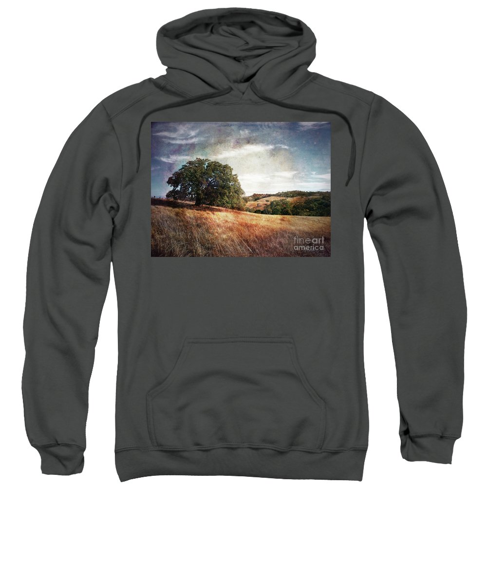 Palo Alto Sweatshirt featuring the photograph Vista Of Distant Memory by Laura Iverson