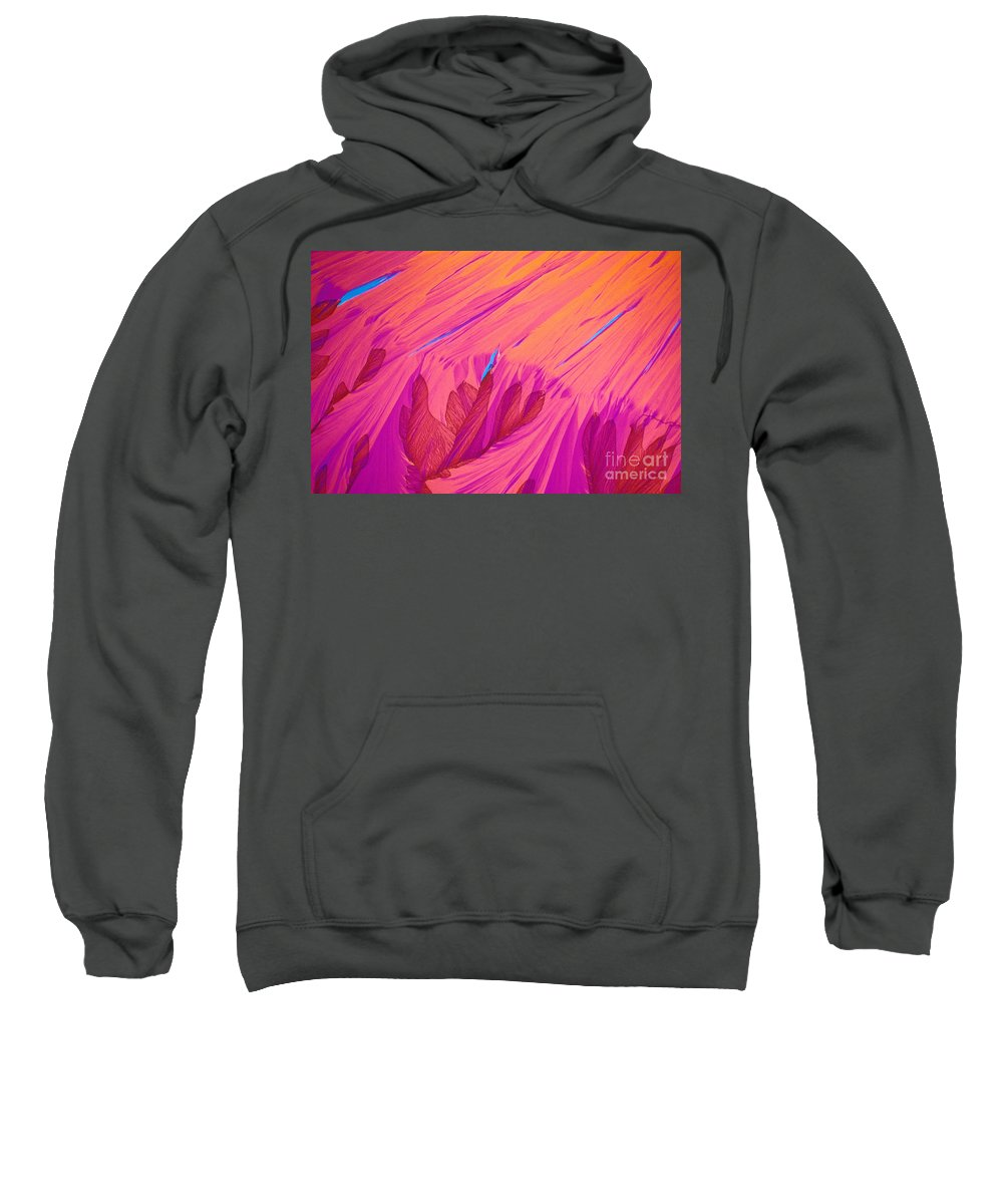 Chemistry Sweatshirt featuring the photograph Vitamin E Crystal by Michael W Davidson