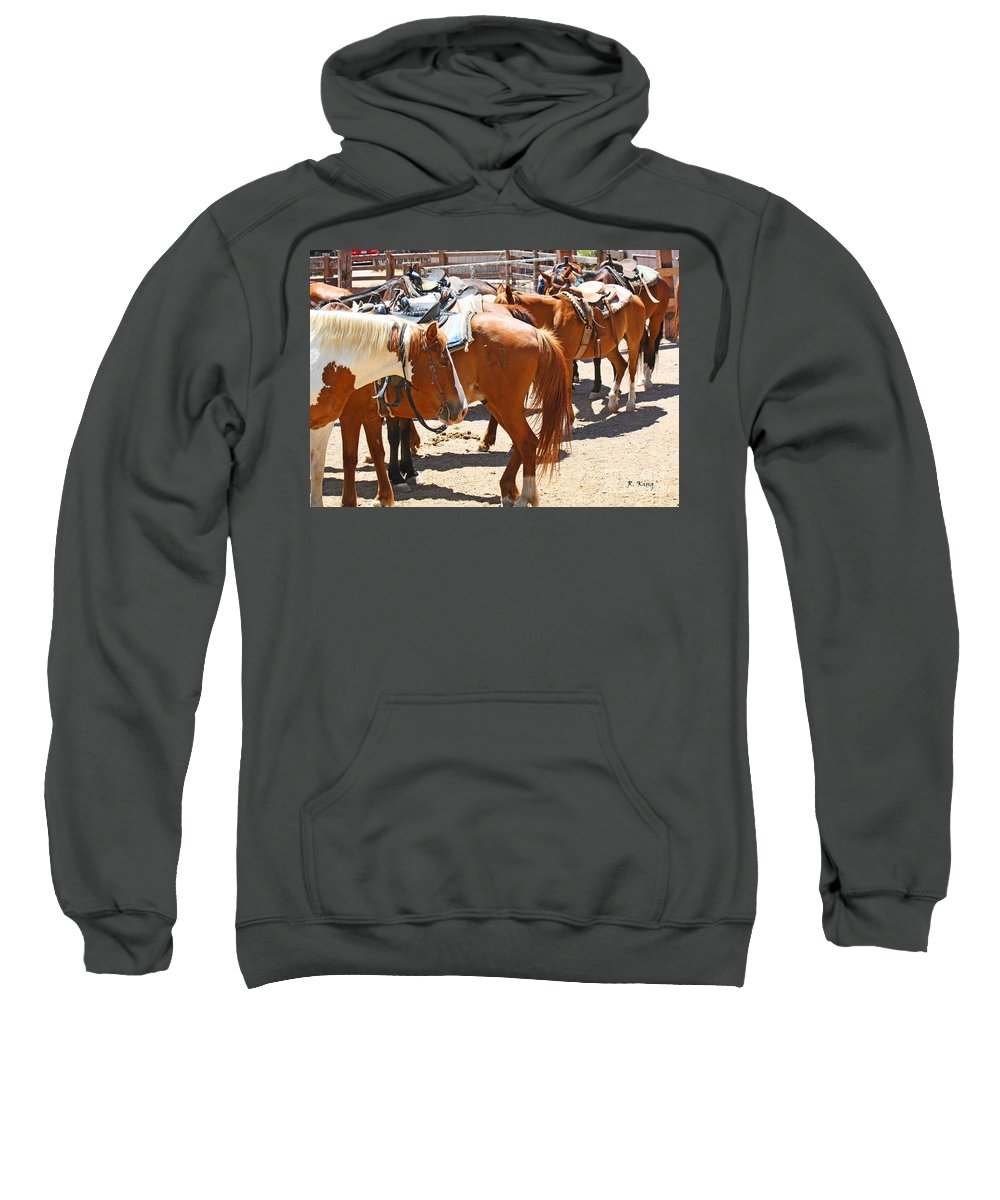 Roena King Sweatshirt featuring the photograph Waiting For The Next Rider by Roena King