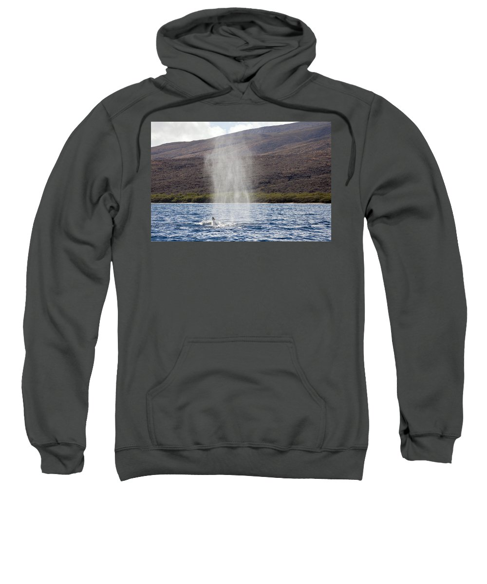 Animal Sweatshirt featuring the photograph Water From A Whale Blowhole by Dave Fleetham