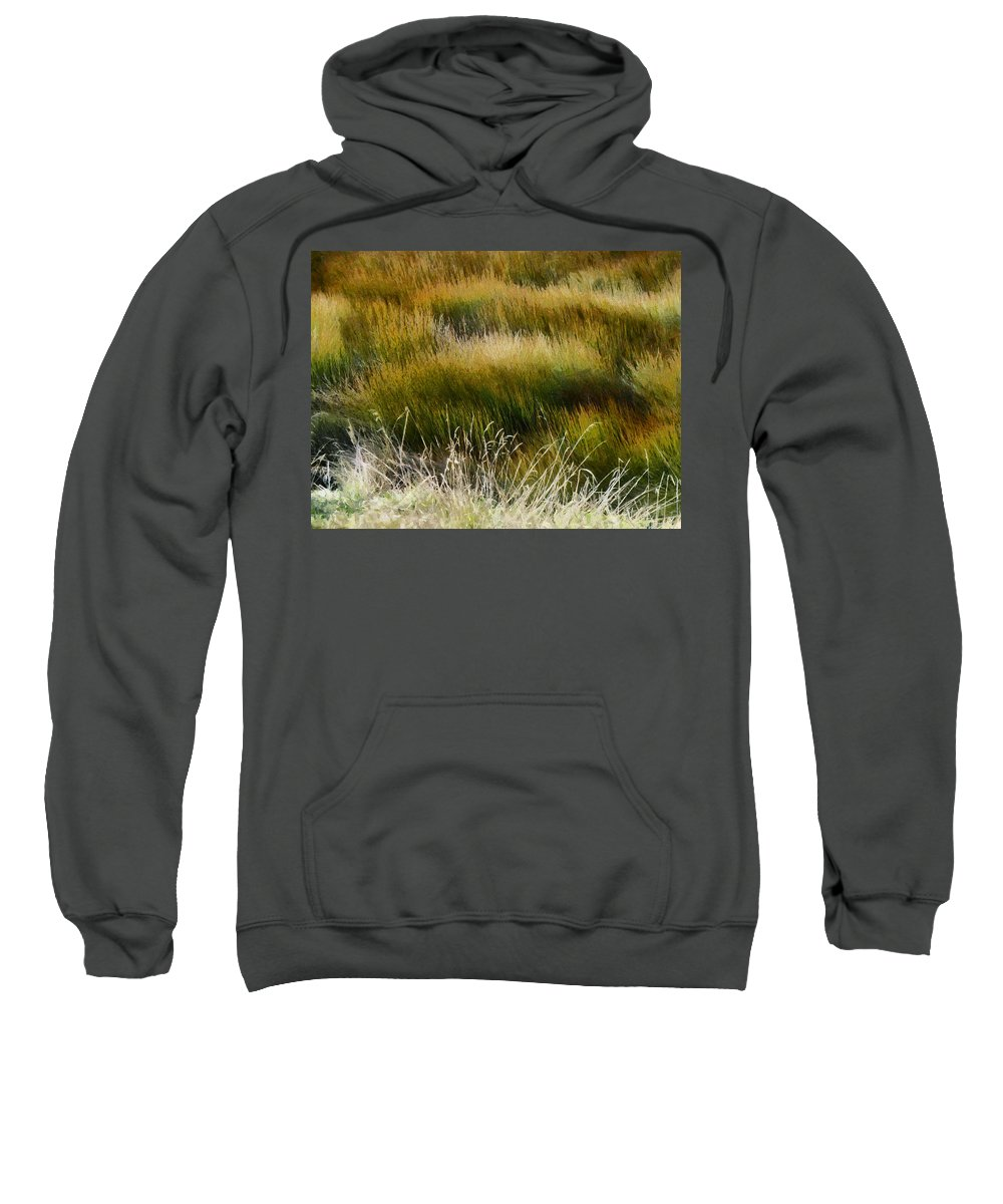 Wet And Dry Sweatshirt featuring the photograph Wet And Dry by Steve Taylor