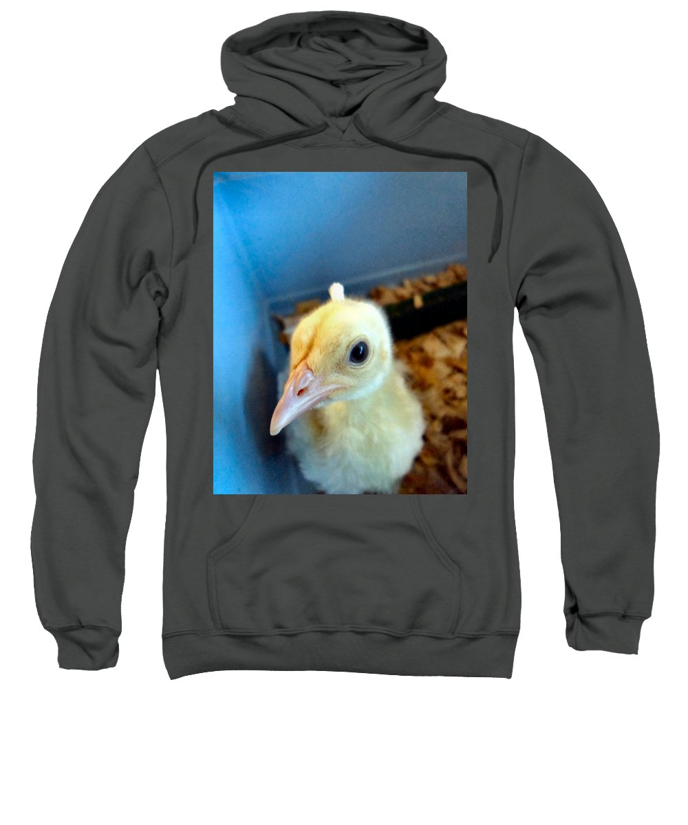 Peacock Sweatshirt featuring the photograph White Peacock by Art Dingo