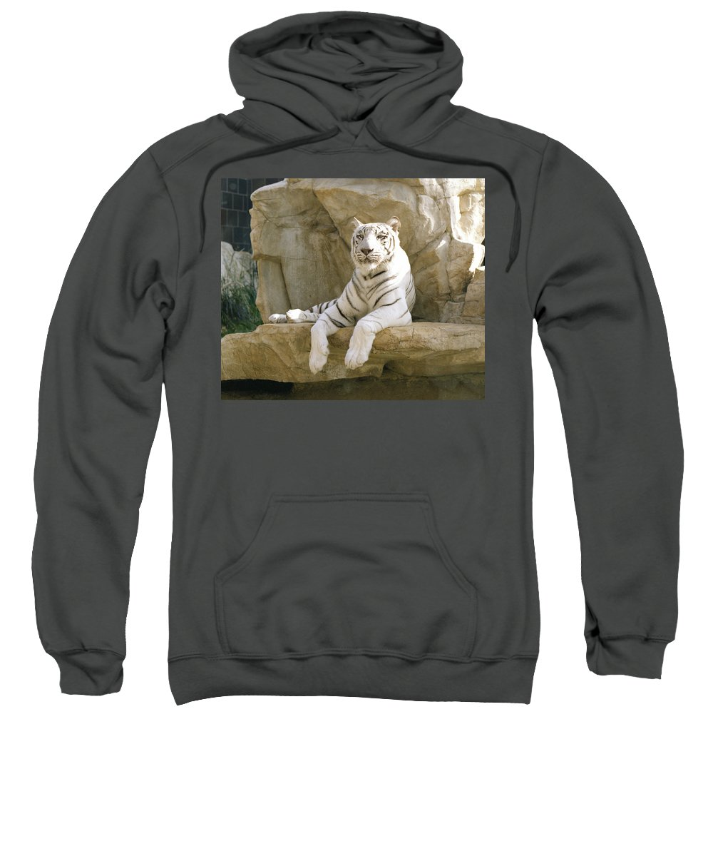 henry Doorly Zoo Sweatshirt featuring the photograph White Tiger by John Bowers