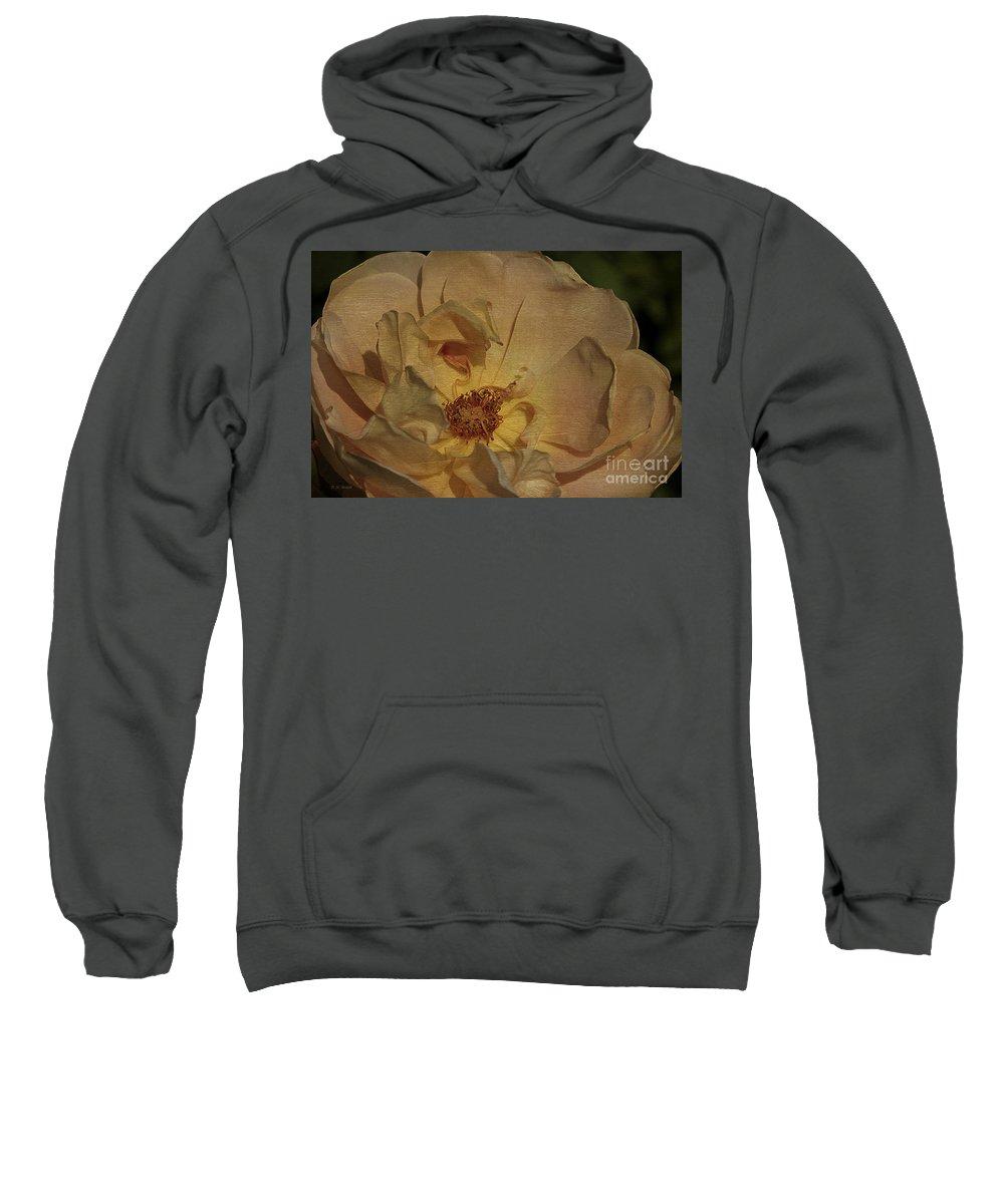 Flower Sweatshirt featuring the photograph Withering Rose by Deborah Benoit