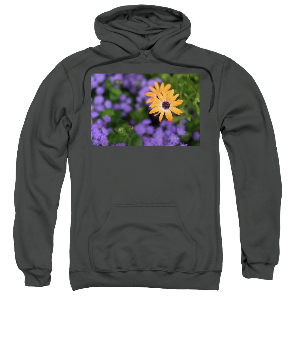 Flowers Sweatshirt featuring the photograph Yellow And Purple by Rick Berk
