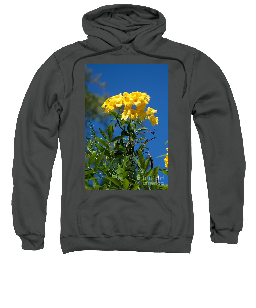 2012 Sweatshirt featuring the photograph Yellow Beauty by Dinah Anaya