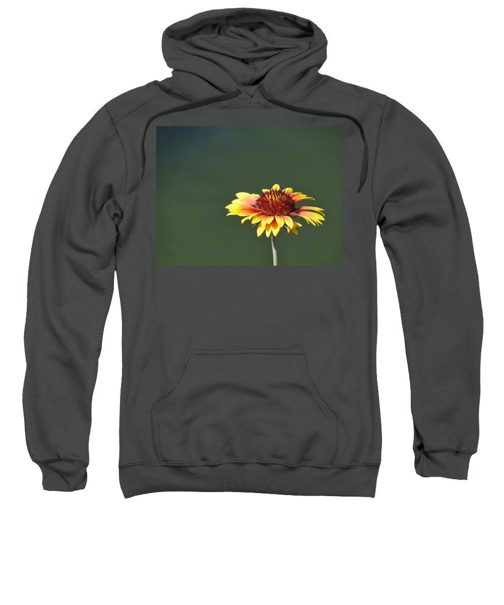 Yellow Sweatshirt featuring the photograph Yellow Flower by Alan Hutchins