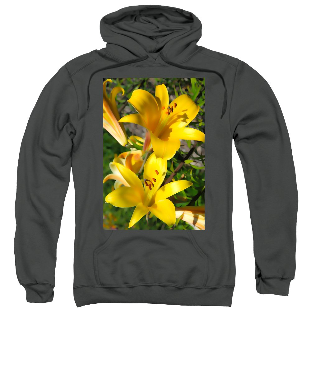 Sunflower Sweatshirt featuring the photograph Yellow Trumpets by Steve McKinzie