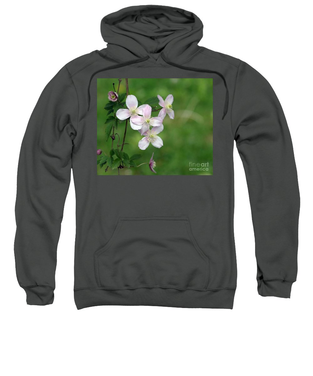 Floral Sweatshirt featuring the photograph You're Growing On Me by Living Color Photography Lorraine Lynch