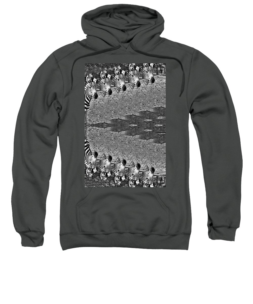 Zebra Circle Sweatshirt featuring the photograph Zebra Half-circle by Douglas Barnard