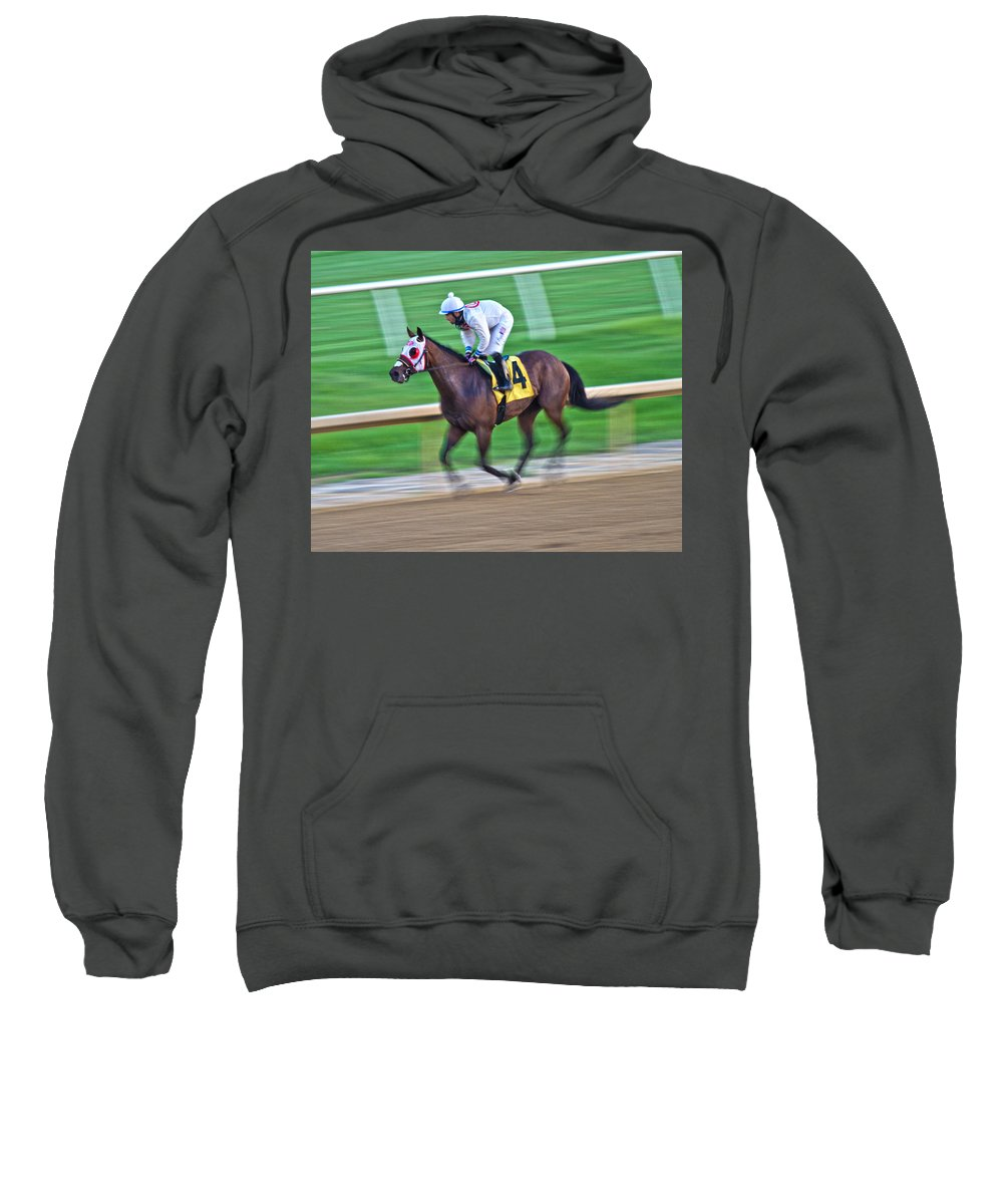 Horse Sweatshirt featuring the photograph Zip by Betsy Knapp