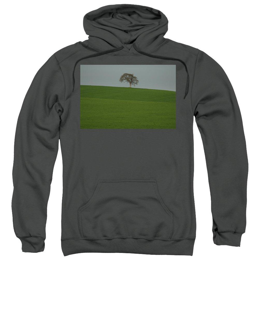 Tree Field Sweatshirt featuring the photograph A Lone by Sara Stevenson