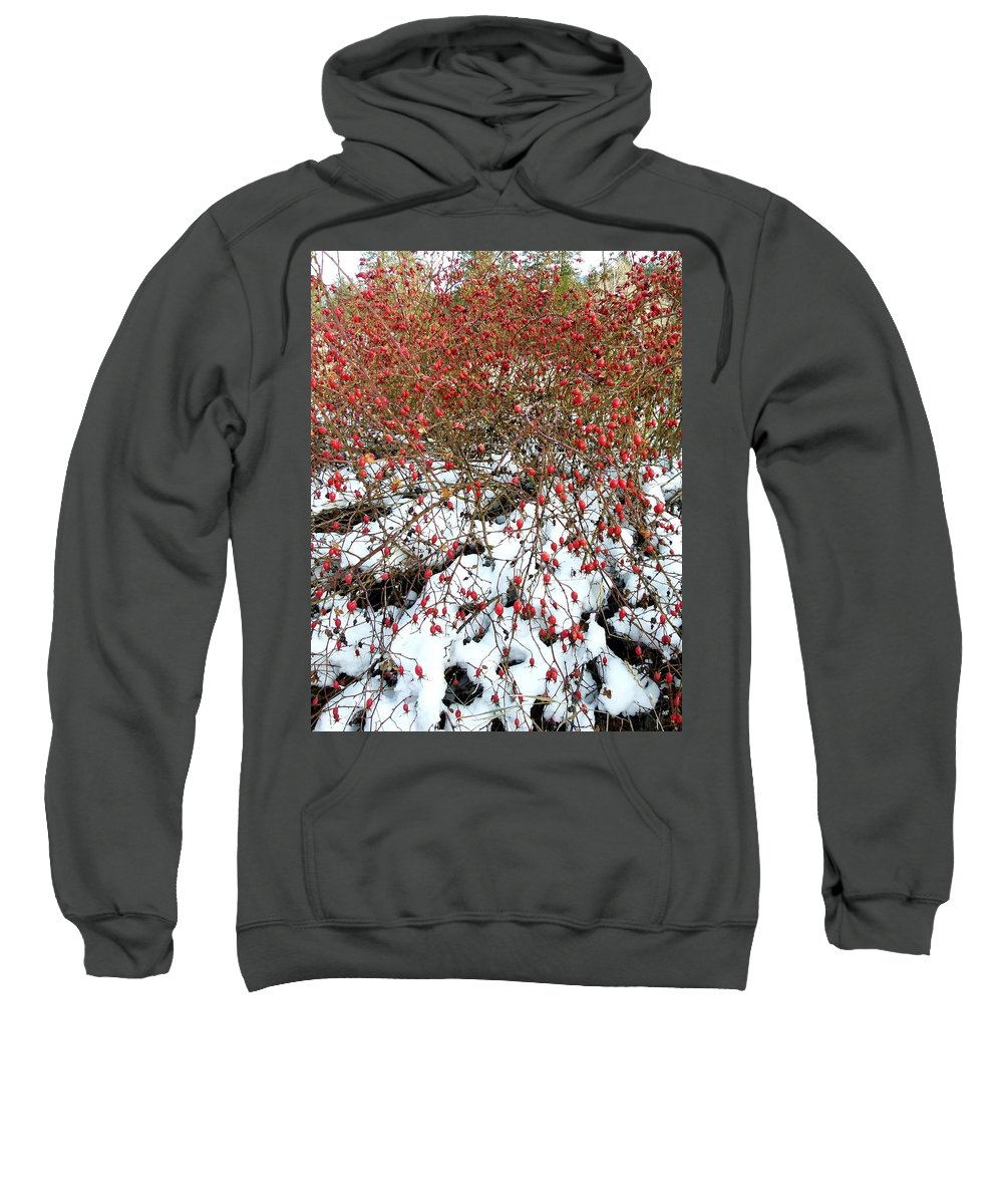 Winter Sweatshirt featuring the photograph Winter Harvest 2 by Will Borden