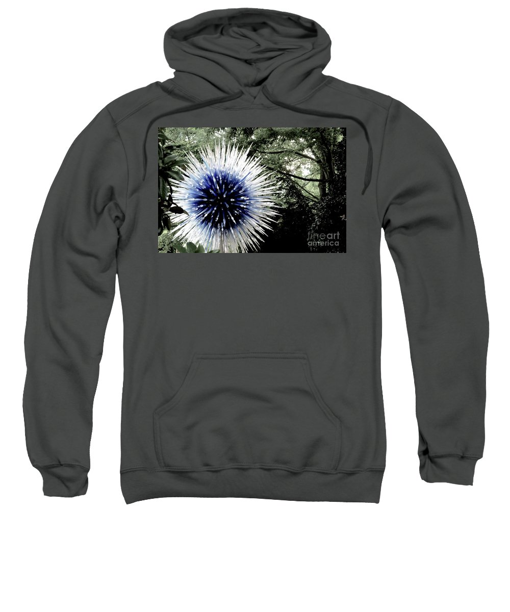 Canon T3i Eos Rebel Sweatshirt featuring the photograph 01142017068 by Debbie L Foreman