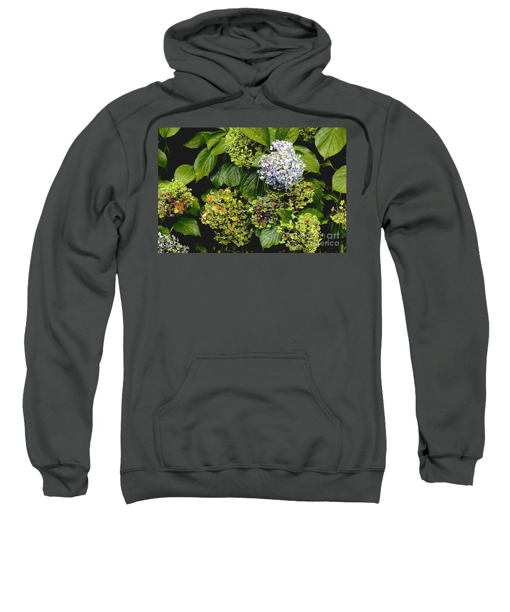 Canon T3i Eos Rebel Sweatshirt featuring the photograph 01142017082 by Debbie L Foreman