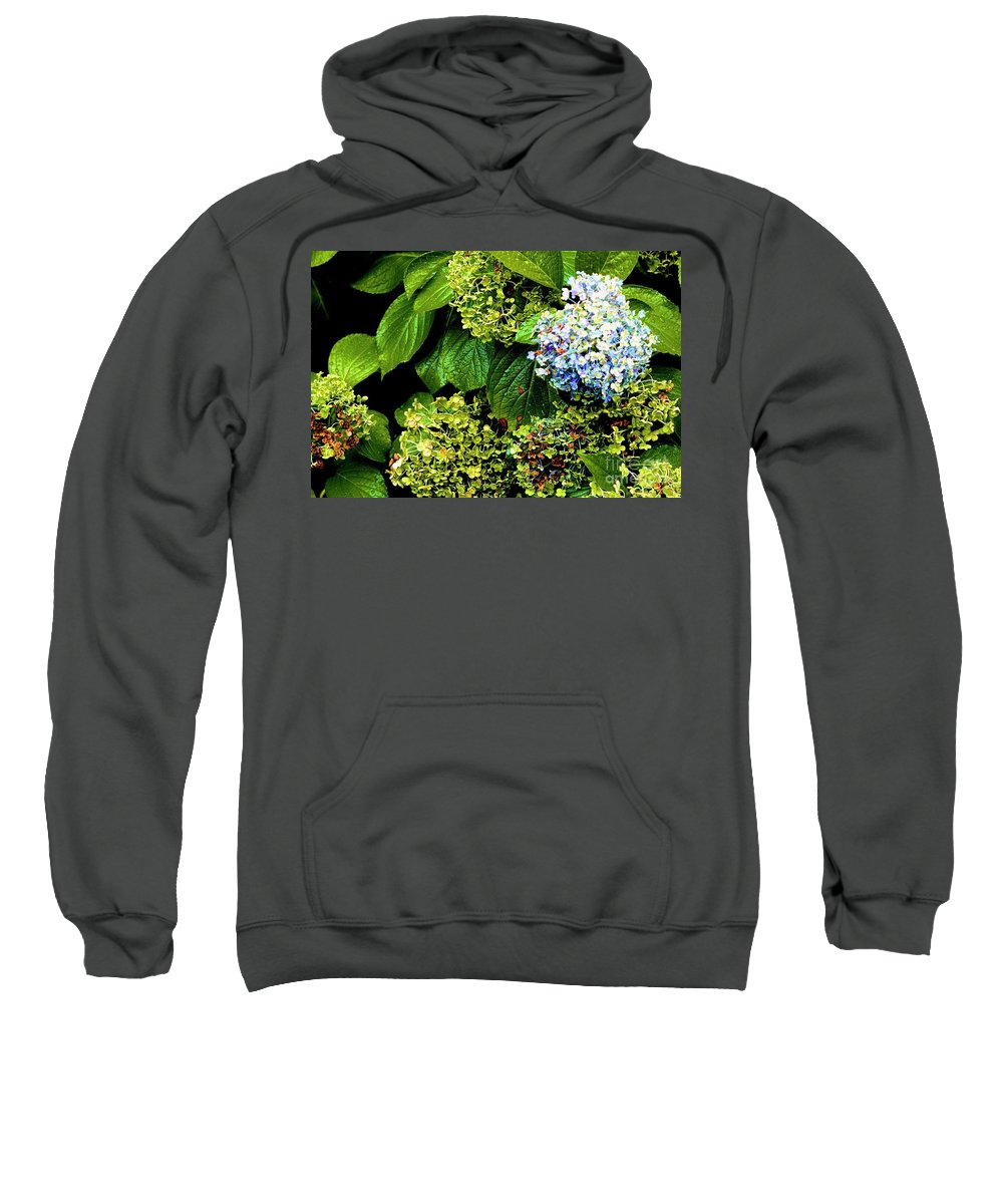 Canon T3i Eos Rebel Sweatshirt featuring the photograph 01142017083 by Debbie L Foreman