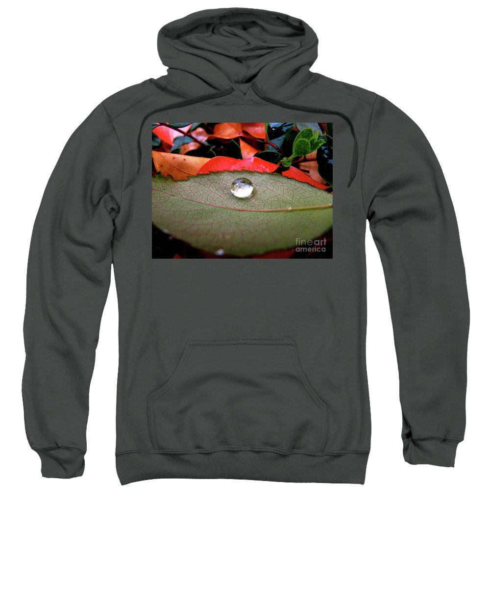 Cml Brown Sweatshirt featuring the photograph All Aboard by CML Brown