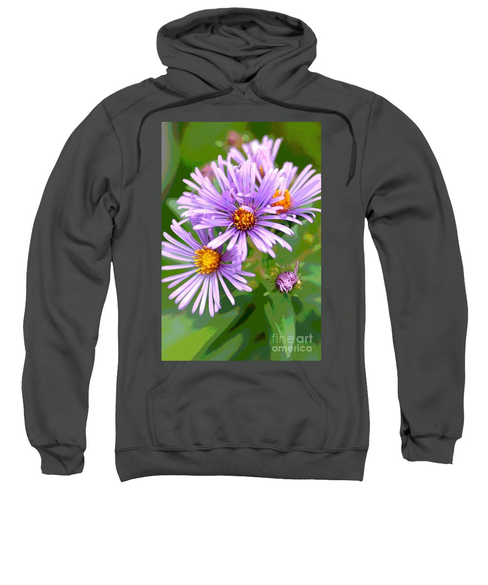 Flower Asters Native Plant Purple Nature Floral Sweatshirt featuring the photograph Asters by Jennifer Smithwell
