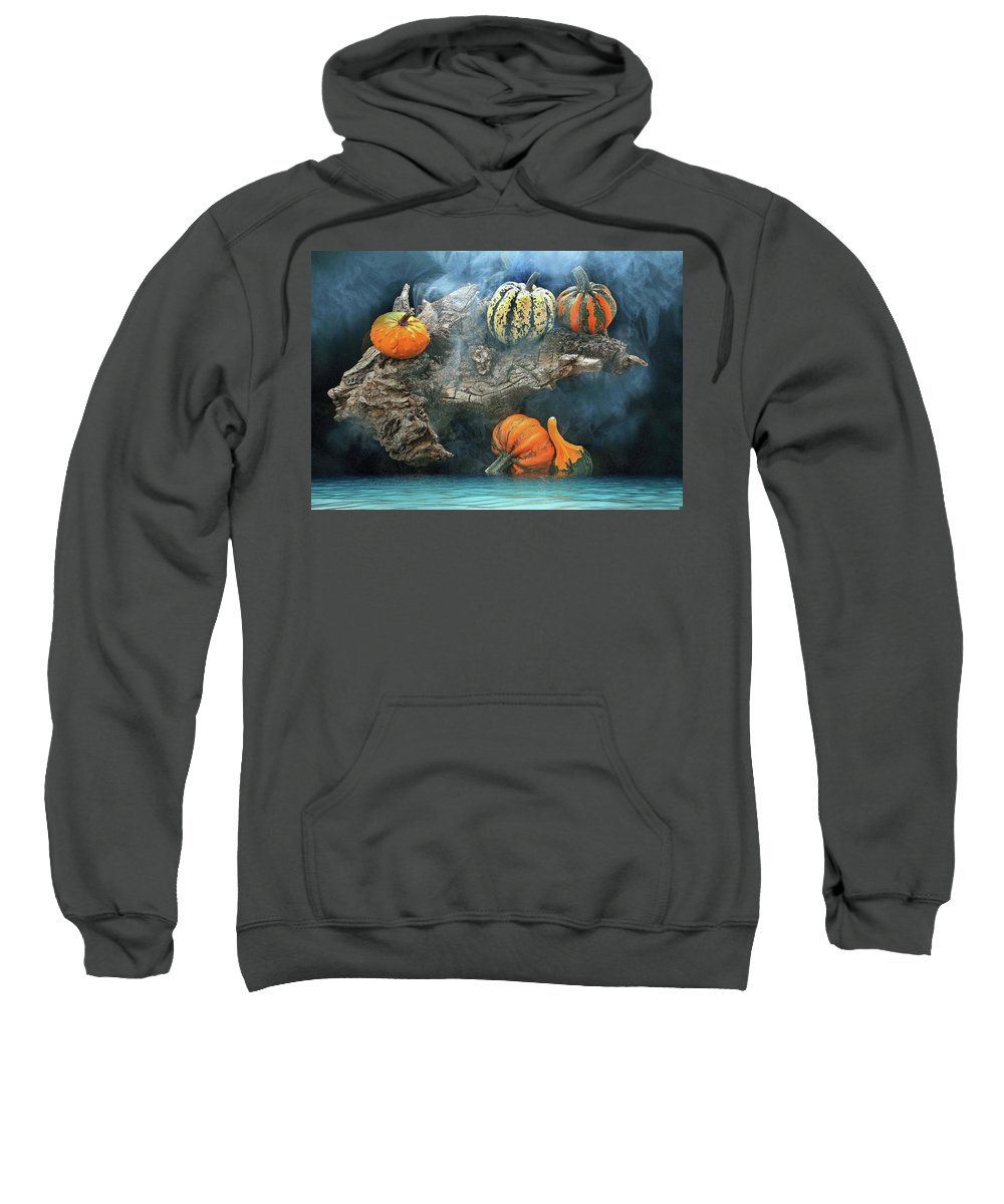 Autumn Sweatshirt featuring the photograph Autumn by Manfred Lutzius