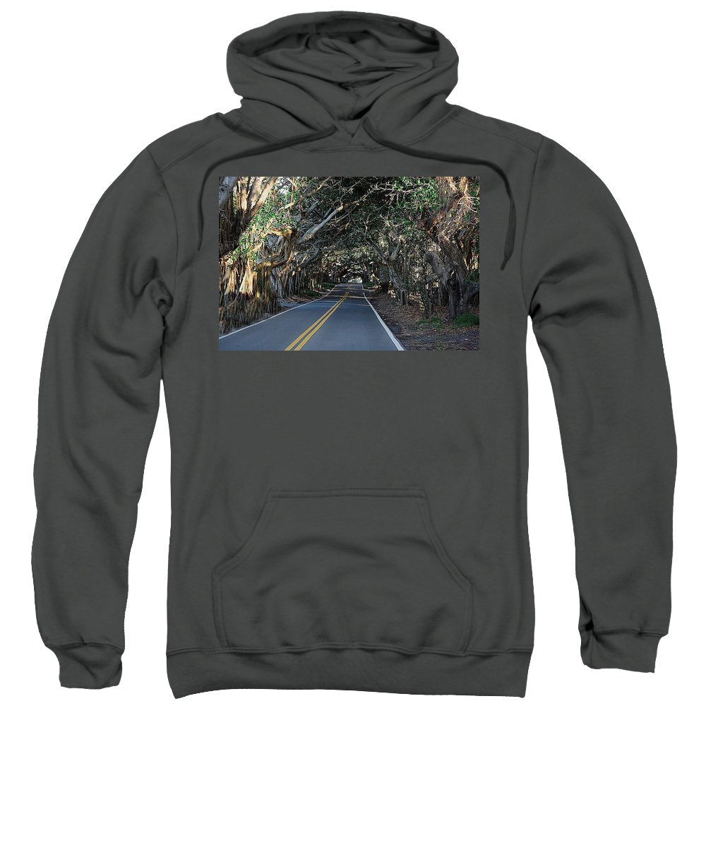 Banyans Sweatshirt featuring the photograph Banyans by Colleen Fox