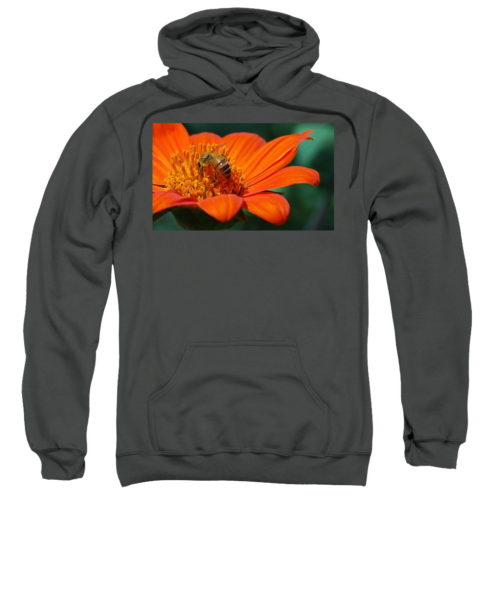 Orange Flower Sweatshirt featuring the photograph Bee-utiful by Debbie Karnes