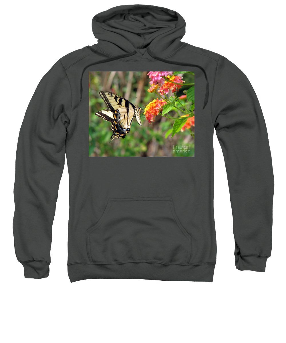 Butterfly Sweatshirt featuring the photograph Butterfly by Amanda Barcon