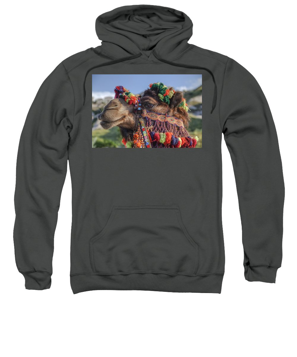 Camel Sweatshirt featuring the photograph Camel by Joana Kruse