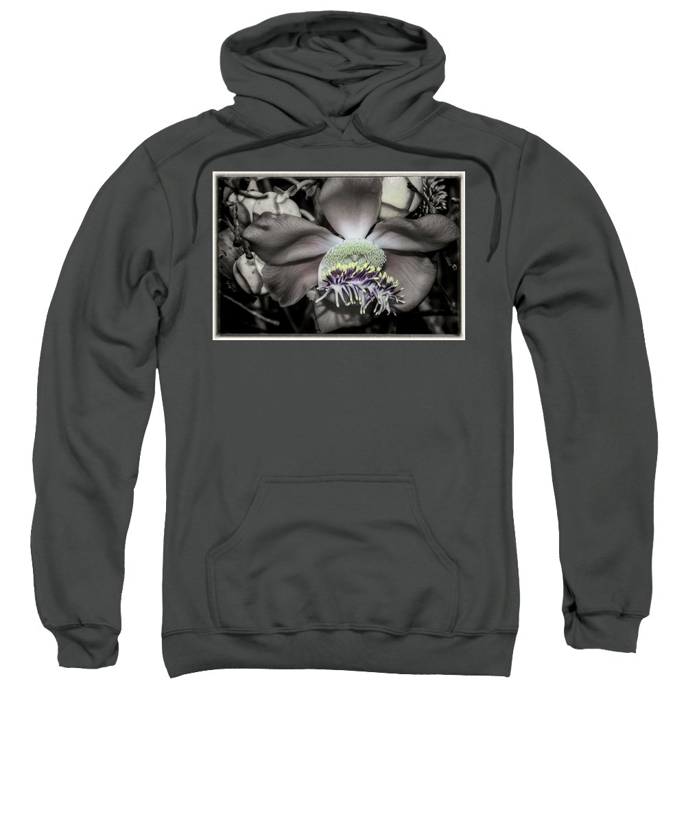 Flower Sweatshirt featuring the photograph Cannonball Flower by Donald Pash
