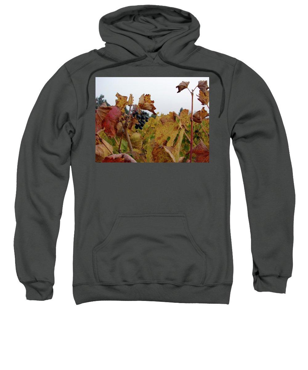 Colchagua Sweatshirt featuring the photograph Colchagua Valley Vineyard by Brett Winn