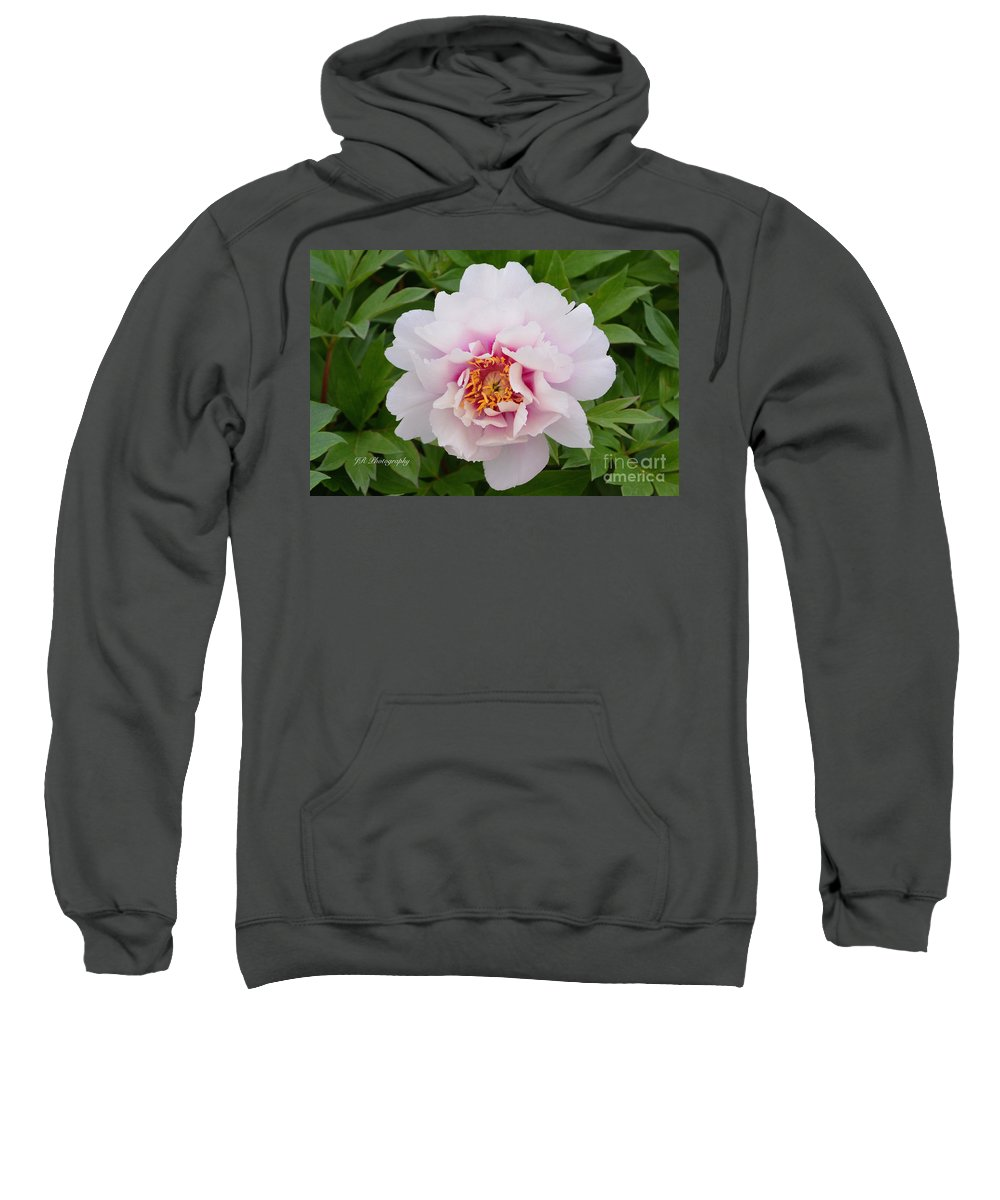 Cora Louise Peony Sweatshirt featuring the photograph Cora Louise by Jeannie Rhode