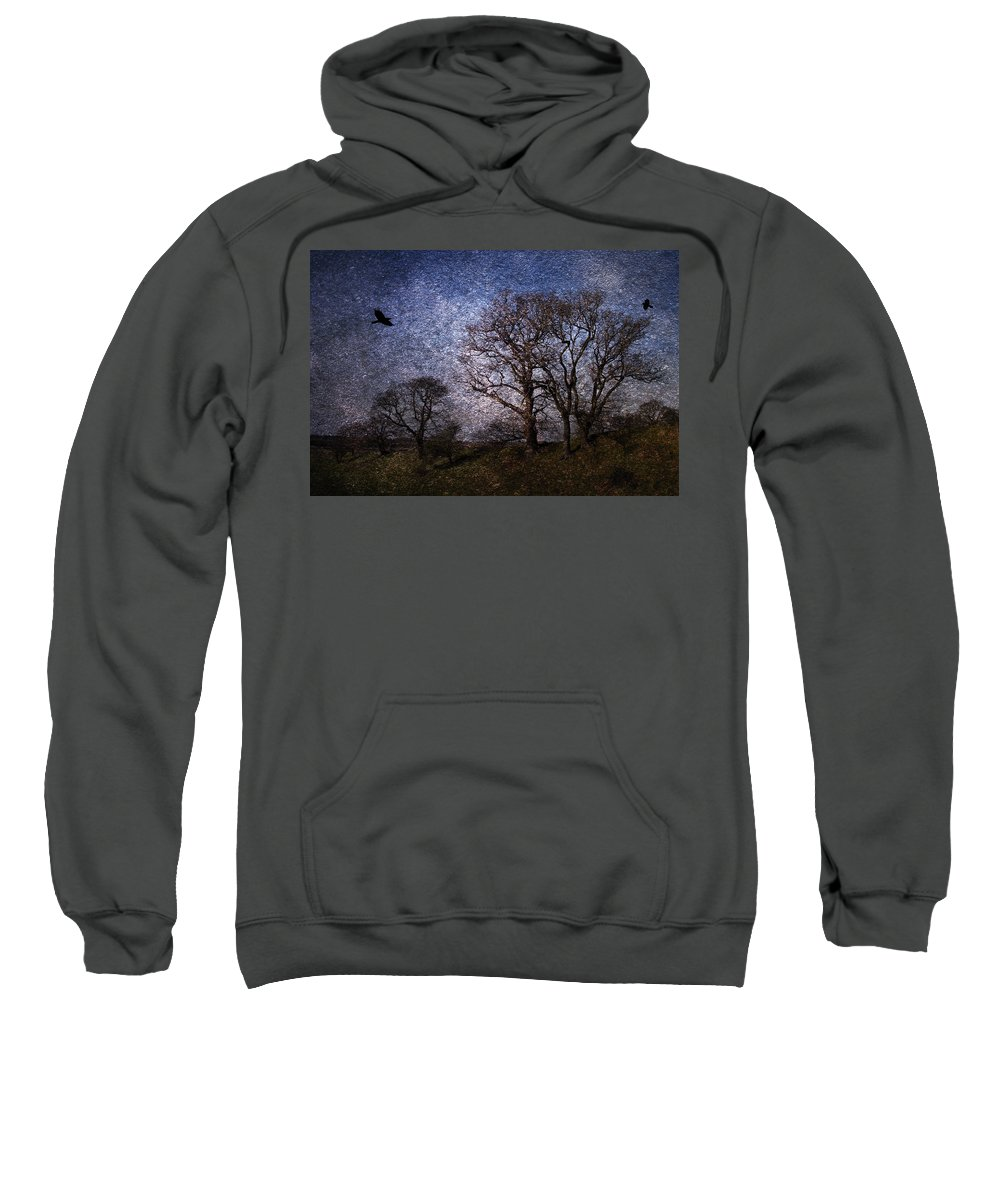 Trees Sweatshirt featuring the digital art Dark Trees by Martin Fry