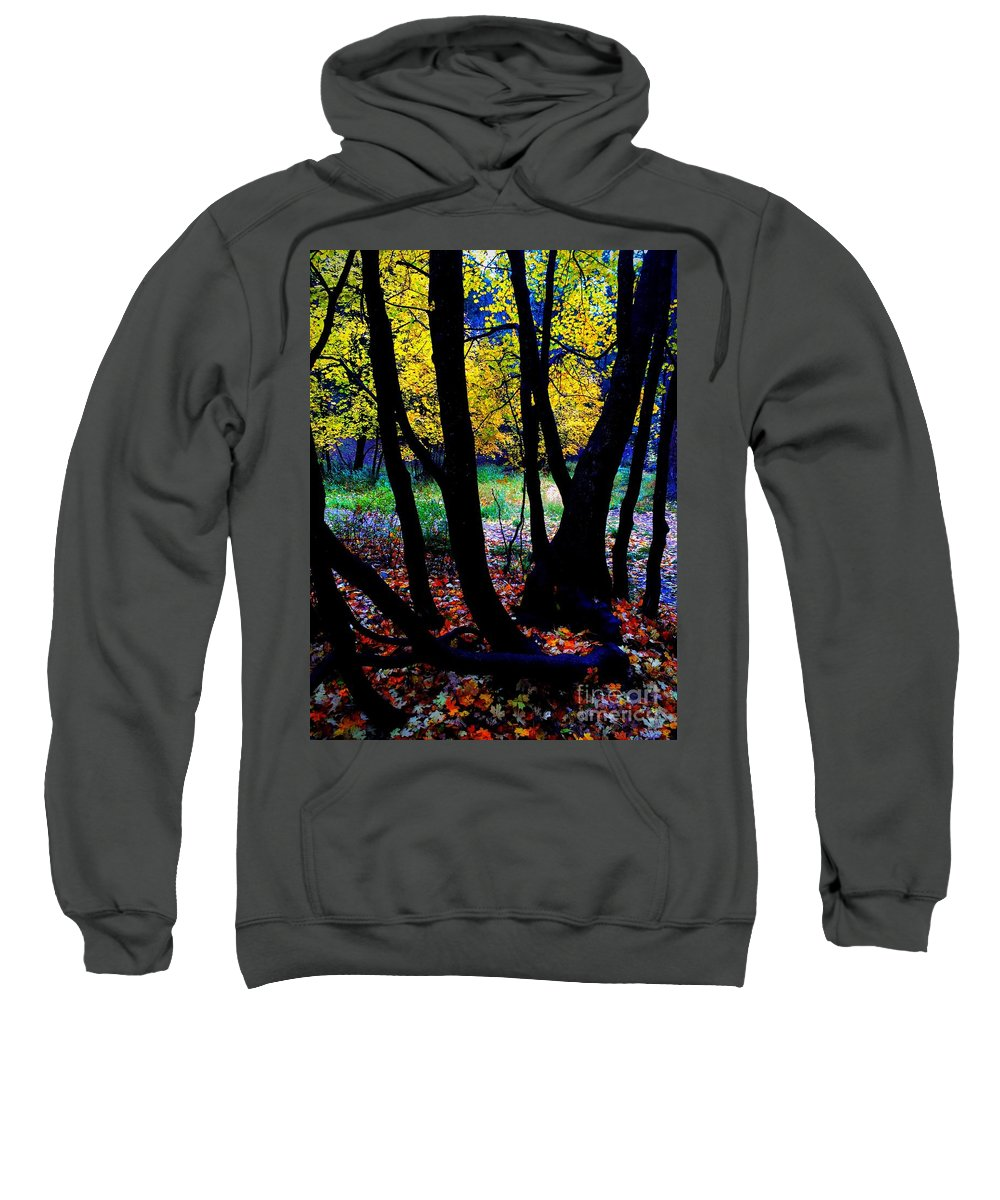 Black Sweatshirt featuring the photograph Fall Tree by Marie Webb