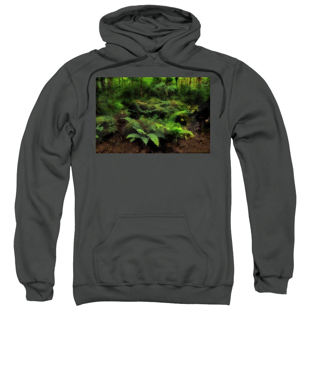 Ferns Sweatshirt featuring the photograph Ferns Of The Forest by Mike Eingle